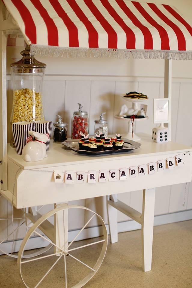 http://spaceshipsandlaserbeams.com/blog/party-central/boys-birthday-party-magic-show